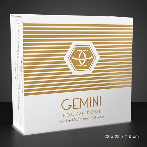 Gemini Hookah Bowl White Standard Package